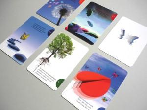 6 kaarten